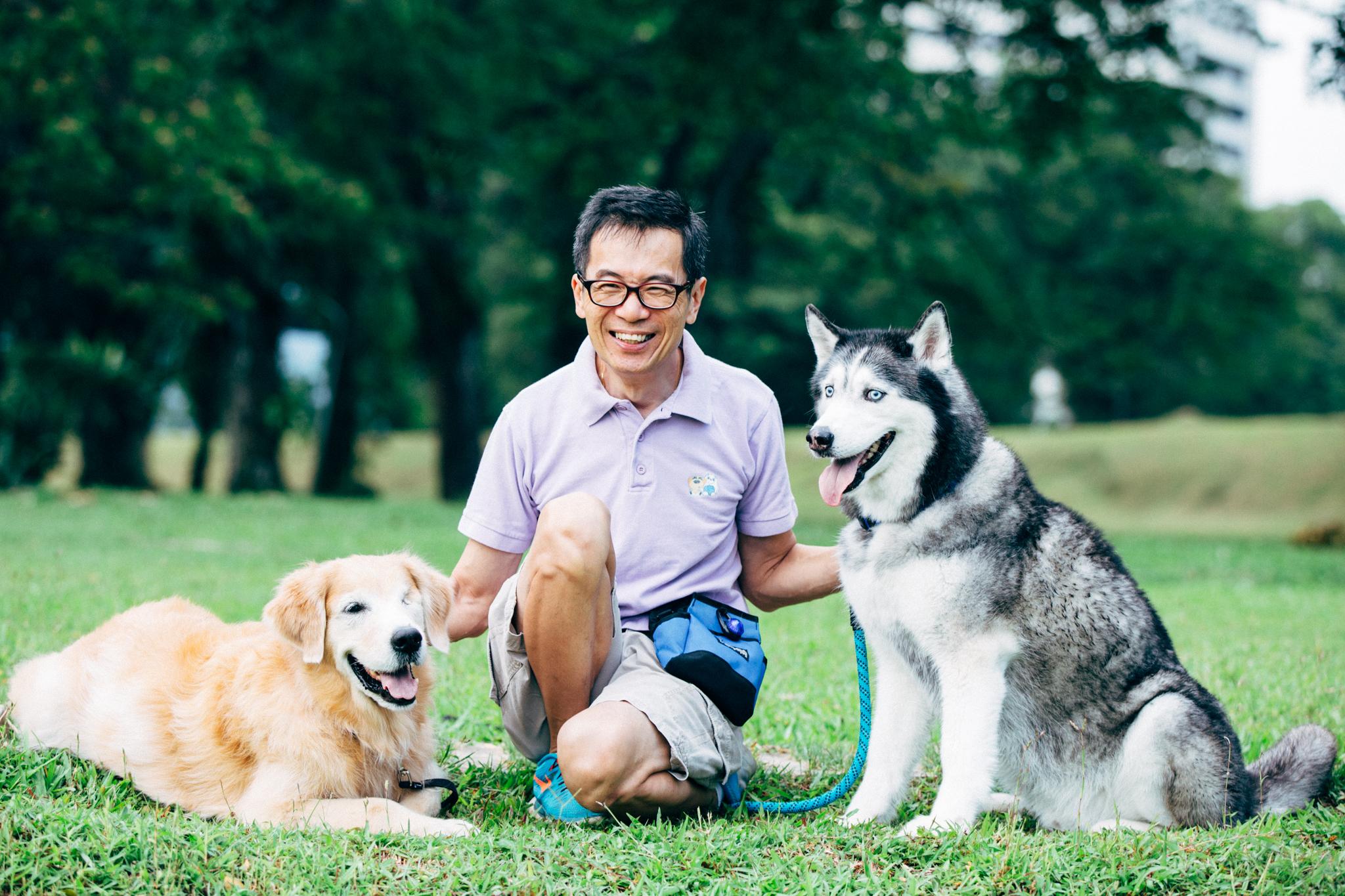 Certified Dog Walking Service Dog Walker Pet Dog Sitting Singapore
